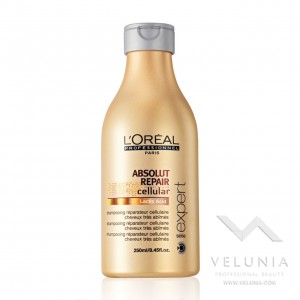 L'Oreal Expert Absolut 250ml