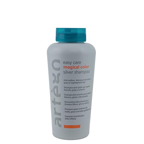 ARTEGO Easy Care Magical Color Silver Shampoo 300ml
