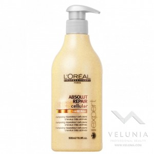 L'Oreal Expert Absolut 500ml